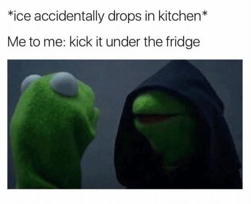 Ice Fridge meme me to me