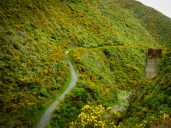 Rimutaka Cycle Trail - Sibiria