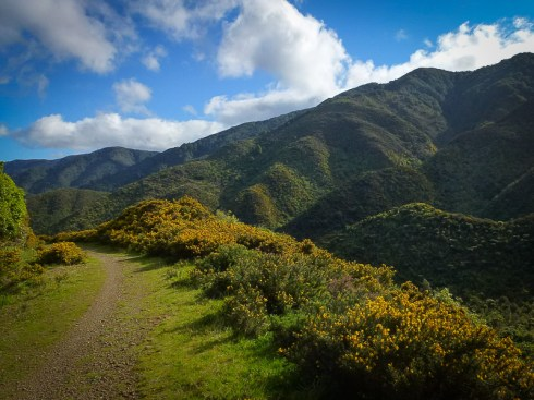 Rimutaka Cycle Trail landscape