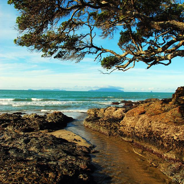 Waipu Cove