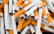 cigarette-pile-oct-31-2011-21