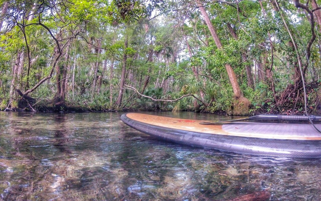 Paddling The Chaz: Clear Springs & Cool Waters