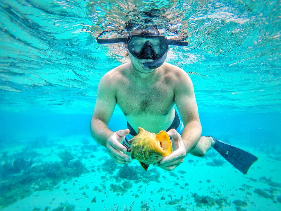 Snorkeling In The Carribbean Sea, Cayman Islands