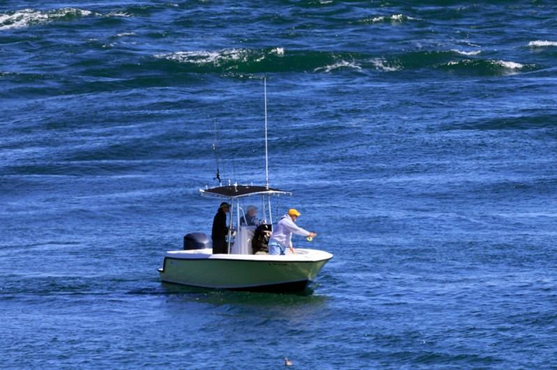 Running the Coast boat