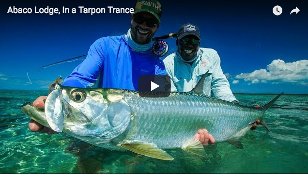 27482a9b735 Video  Fly Fishing for Tarpon in the Bahamas - The Venturing Angler