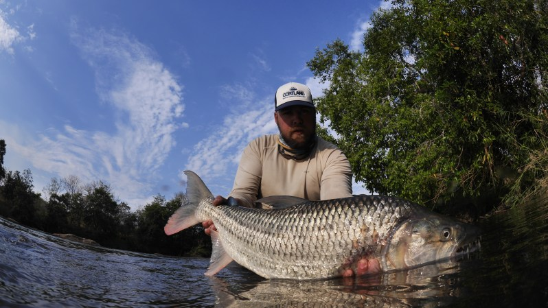 tigerfish Africa fly fishing
