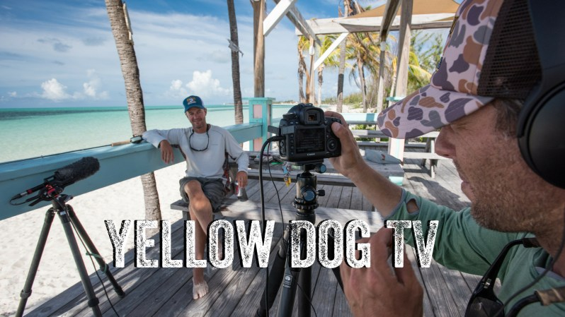 Yellow Dog TV