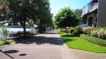 Scenic Walk to Steel & Oak