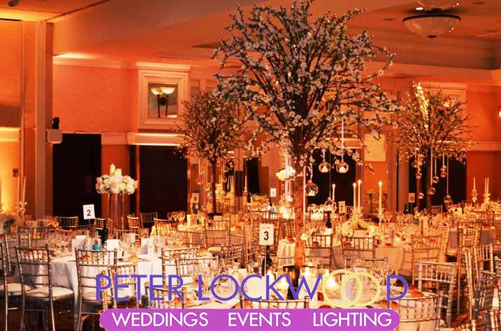 Event and wedding uplighting manchester cheshire venue lighting event and wedding uplighting junglespirit Images
