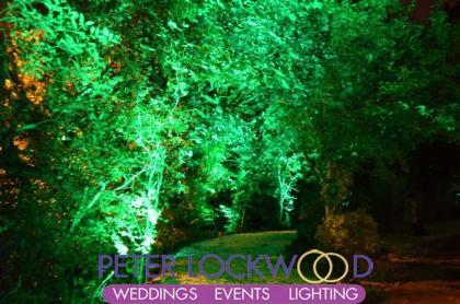 green garden tree lighting