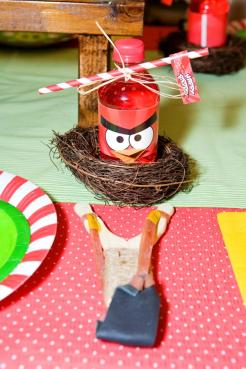 Angry-birds-theme-party9