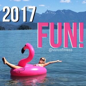 2017 Fun Goals
