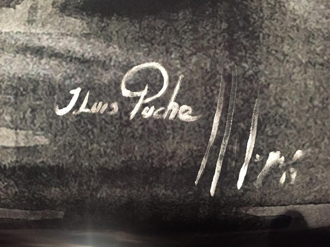 Las palabras de José Luis Puche #palabradeartista