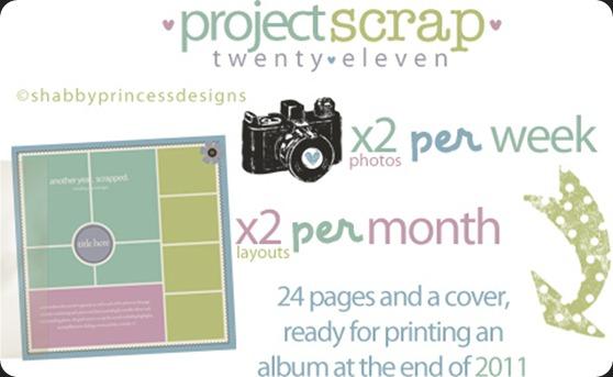 sp_BLOG_projectscrap2011_graphic1