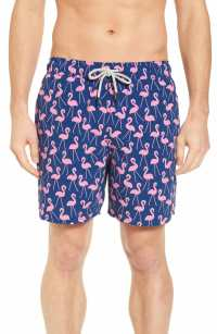 TOM & TEDDY Flamingo Print Swim Trunks, Main, color, ROSE / BLUE