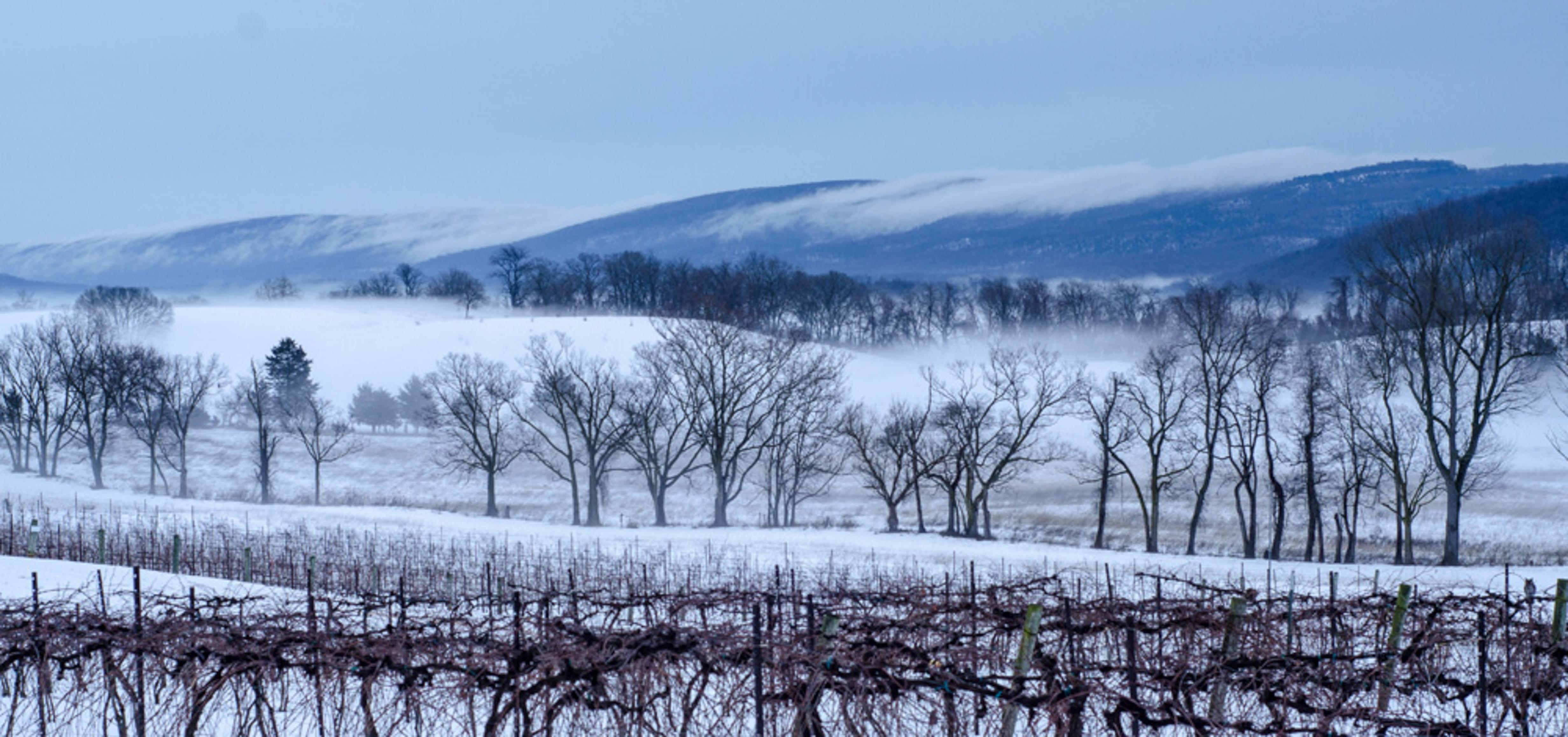 mountains mist snow 1000×470