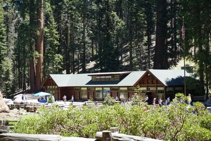 Image of Giant Forest Museum