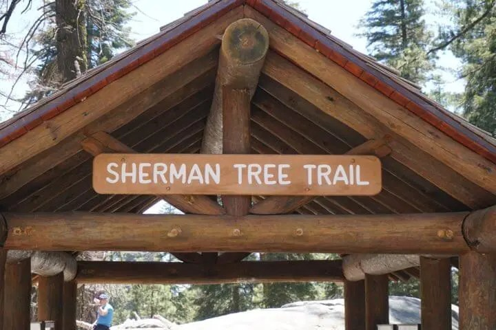 Entrance To The Sherman Tree Trail