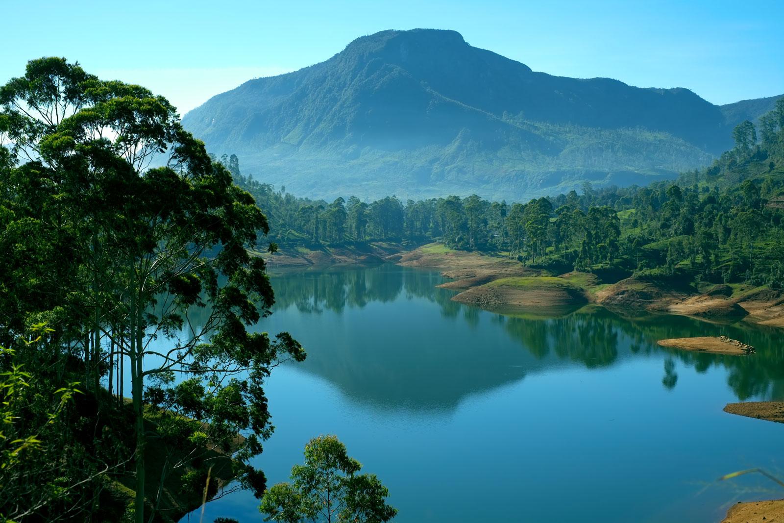 Discover Sri Lanka Nature  Verav Travel Company