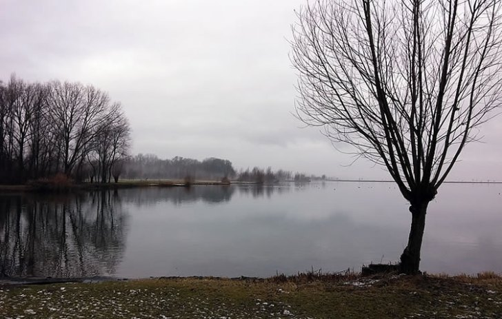 haarrijnseplas-maximapark-bron-mirjam-klever