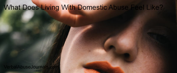 Living with domestic abuse makes you feel crazy, disoriented, confused and wrong. Living with domestic abuse kills your soul. It can kill you. Learn more.