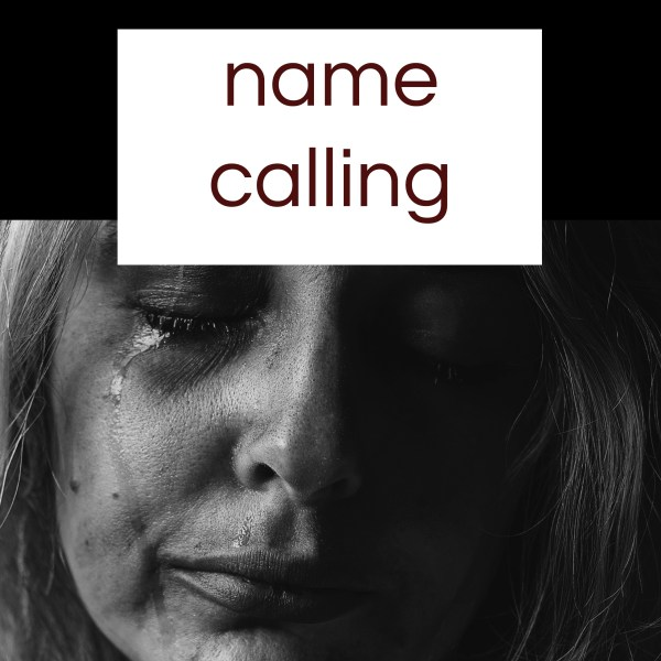 Name Calling is Only One Kind of Verbal Abuse | Verbal