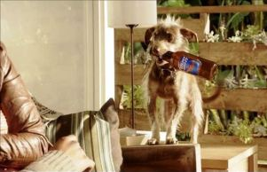 Reklama za Bud Light