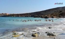 Paradise Bay 4