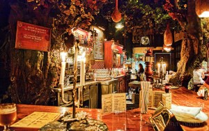 The Forest of the Fairies bar (Bosque de las Hadas)