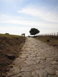 Decumanus Maximus e Porta di Sulpicius Mundus