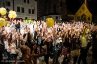 Andreas Habash Stadtfest Cham 2016 DSC01699