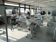 habash-andreas-curriculum-endodontie-generalisten-iidscf8562