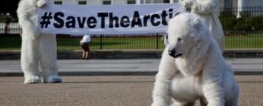 Una protesta de Greenpeace frente a la Casa Blanca, el 21 de junio de 2012, exigiendo acciones para salvar los osos polares. Foto: Greenpeace