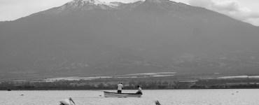 Laguna de Zapotlán. Al fondo el Nevado de Colima. Foto: Mario Galindo