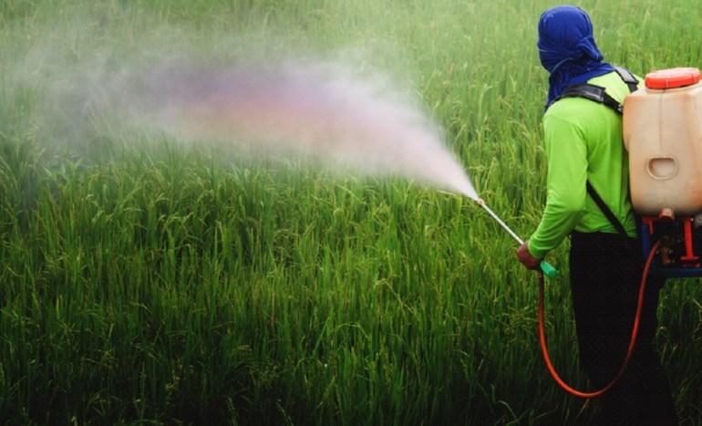 Pesticidas daños a la salud