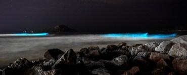 playas de mazatlán brillan de noche