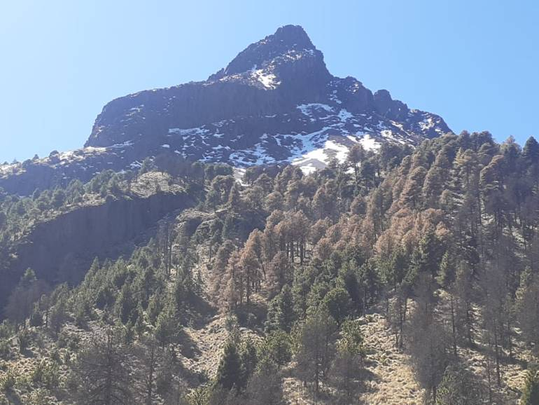 El Nevado de Colima tiene una altitud de 4 260 metros sobre el nivel del mar. Foto: Agustín del Castillo.