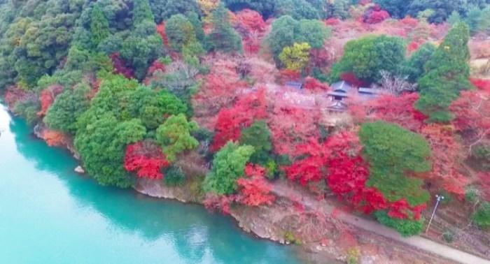 arashiyama011