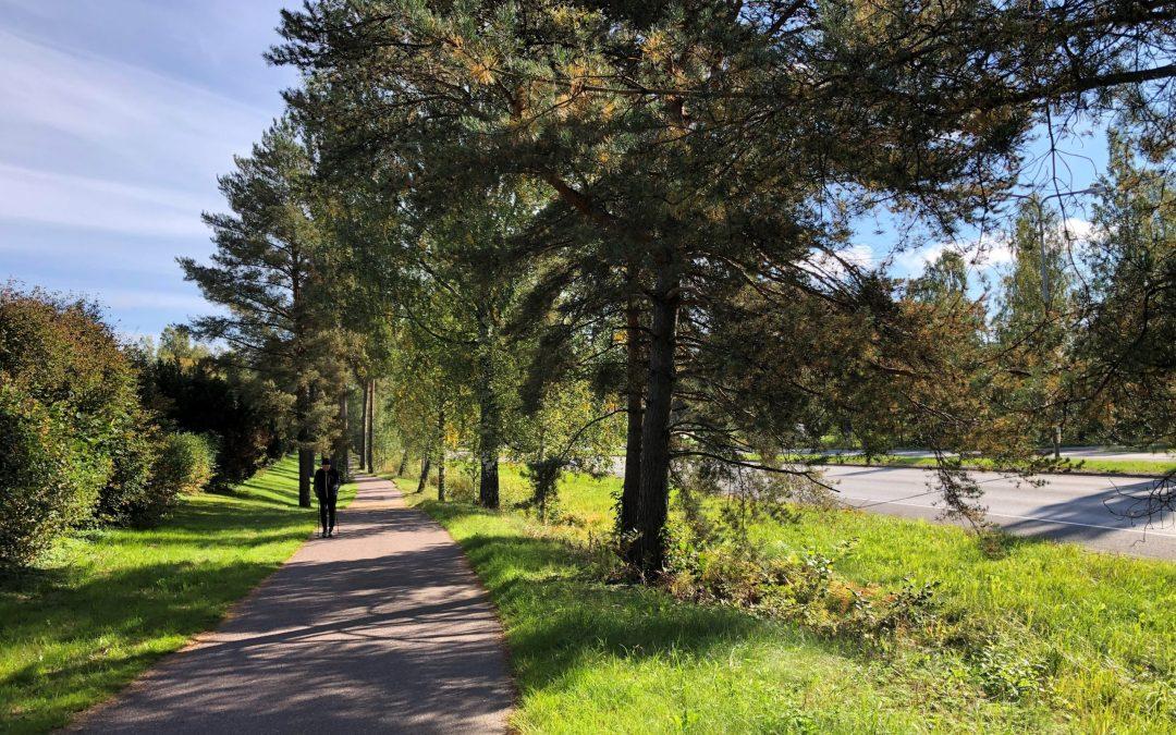 Ilmastonmuutokseen sopeutumiseksi tarvitaan vähemmän asfalttia ja enemmän vihreää