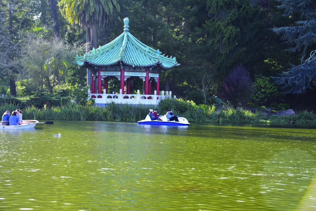 Paddle boaters glide next to a Chinese gazebo through the waters of Stowe Lake, an area nestled in Golden Gate Park.