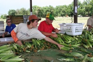 Sweet corn stand