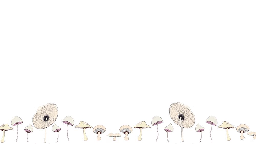 mush3 background