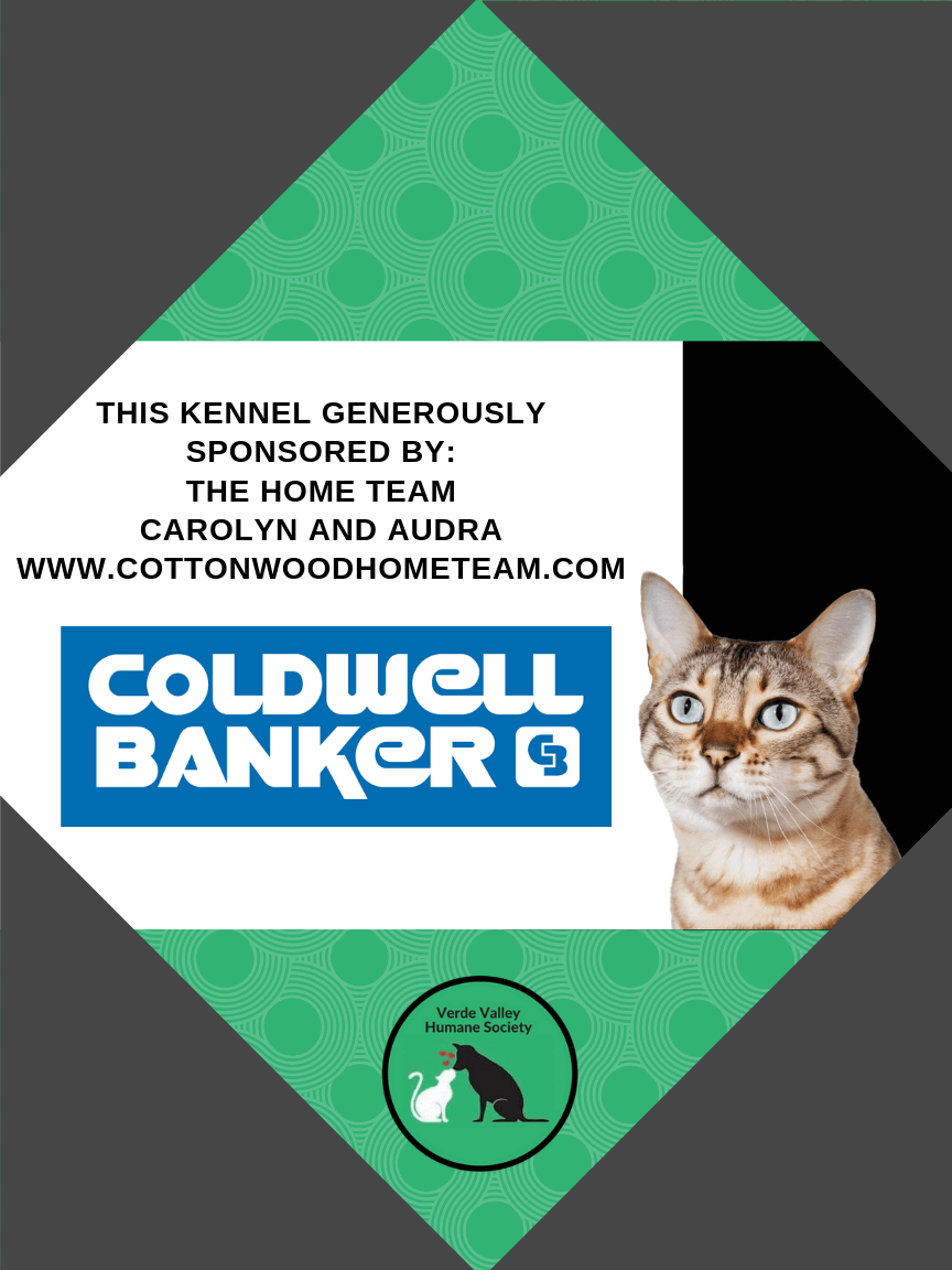 Kennel Sponsorship