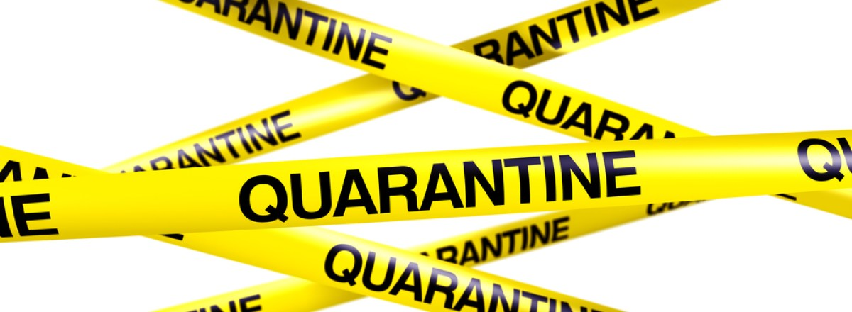 Containing Ebola: Quarantine and the Constitution