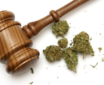 Nebraska and Oklahoma Take Colorado to the Supreme Court Over Legalized Marijuana