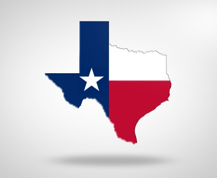 "Independence Day: <span class=""subtitle"">The Texas Supreme Court Refuses to Hold That the Federal Constitutional Right of Same-Sex Couples to Marry Has Full Force in Texas</span>"