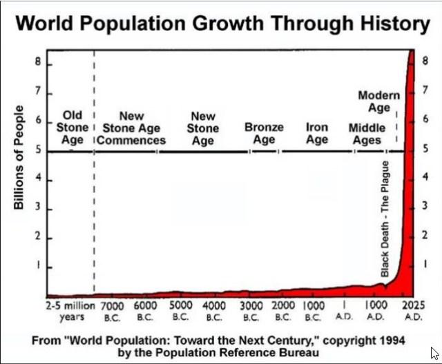 groeicijfer wereldbevolking