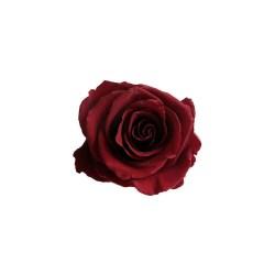 burgundy rose roses heads preserved head flowers standard