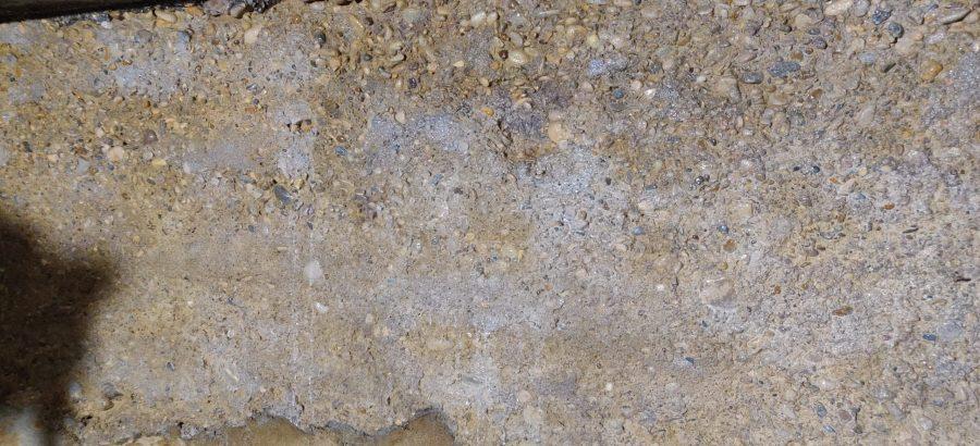 murs traités