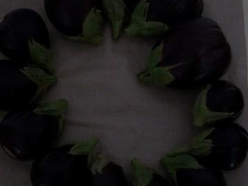 berenjena-de-florencia-negra-redonda-4